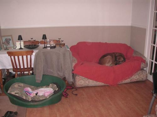 My sofa, mine, mine, mine.